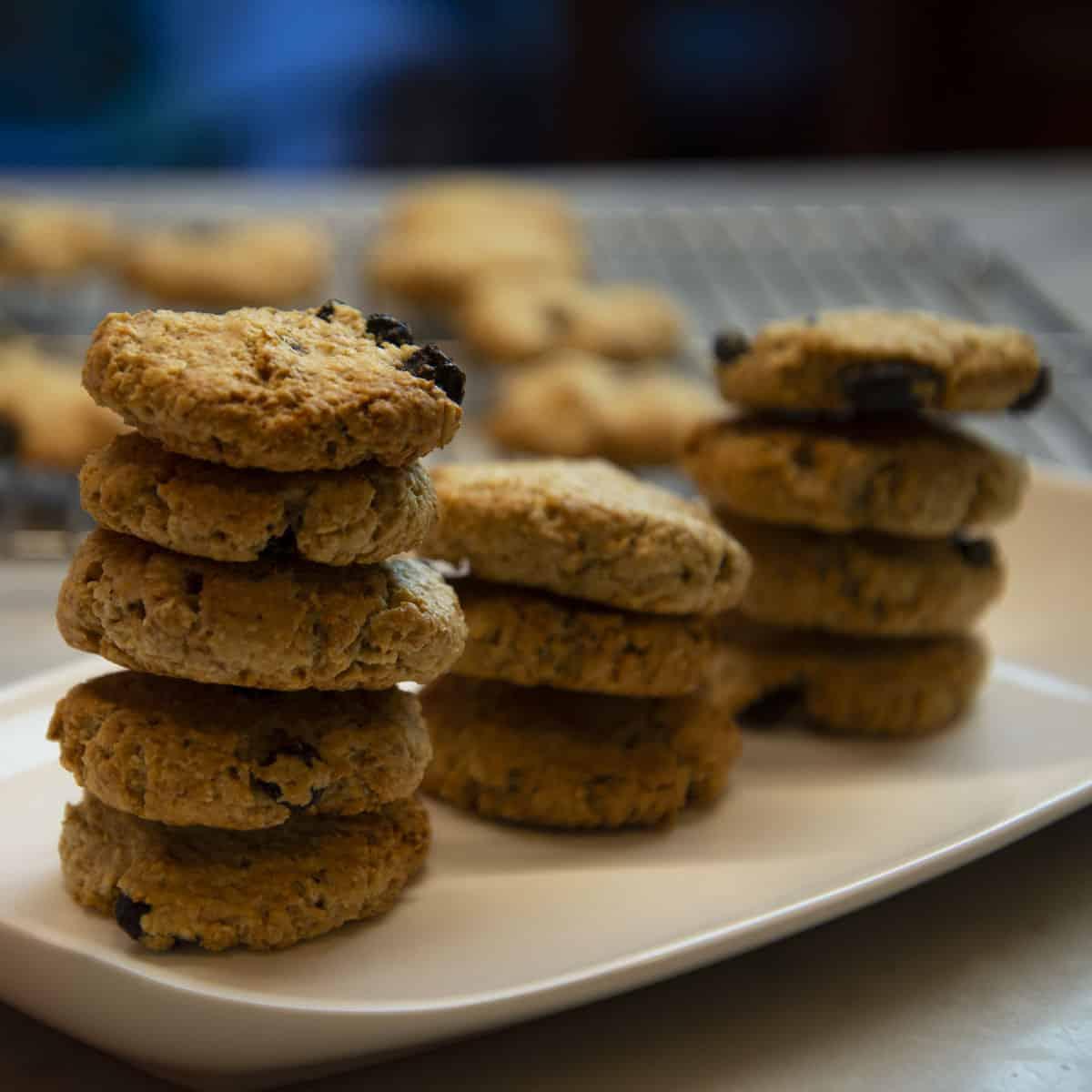 biscotti-di-avena
