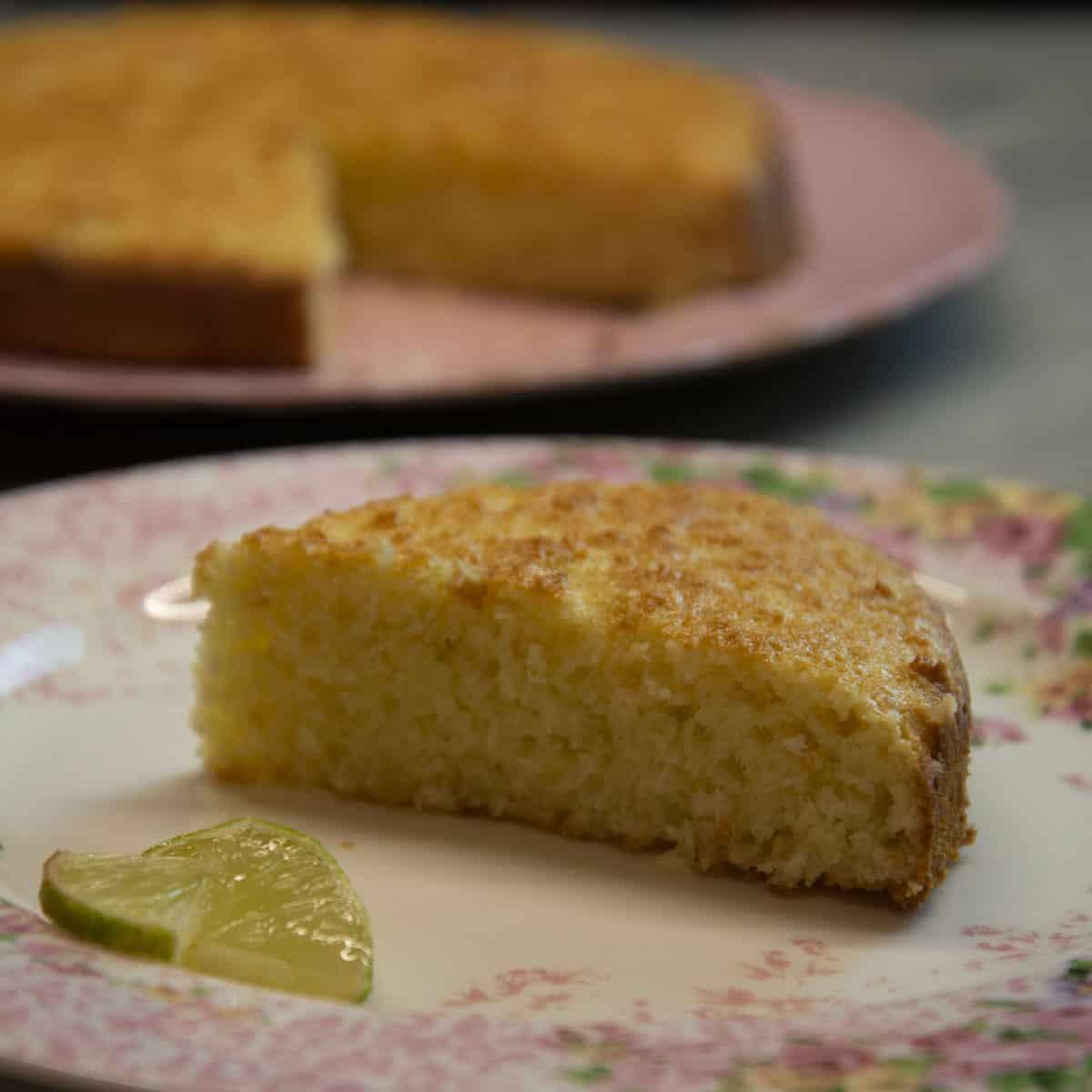 torta-cocco-e-lime