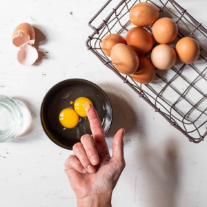 recuperare-i-gusci-uova